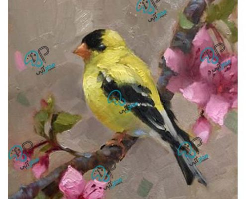 تابلو رنگ روغن پرنده