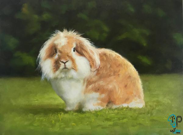 تابلو رنگ روغن حیوانات